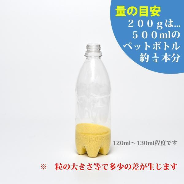 カラーサンド 日本製 デコレーションサンド 細粒(0.2mm位) Gタイプ 橙(03) 200g|sunsins|05