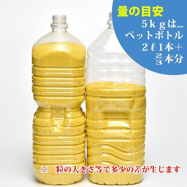カラーサンド 日本製 デコレーションサンド 粗粒(1mm位) Nタイプ 13色の中からお好きな色を1色 5kg sunsins 02
