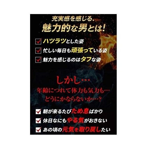 hoconico 贅沢亜鉛 牡蠣のチカラα 1袋 90粒入り (約30日分)|sunsunmarket01|03