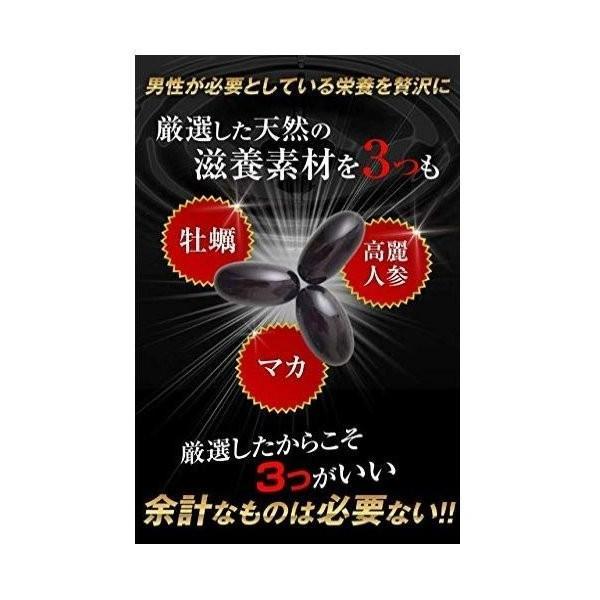hoconico 贅沢亜鉛 牡蠣のチカラα 1袋 90粒入り (約30日分)|sunsunmarket01|05