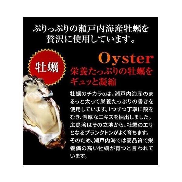 hoconico 贅沢亜鉛 牡蠣のチカラα 1袋 90粒入り (約30日分)|sunsunmarket01|06