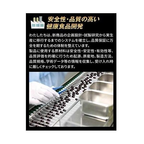 hoconico 贅沢亜鉛 牡蠣のチカラα 1袋 90粒入り (約30日分)|sunsunmarket01|09