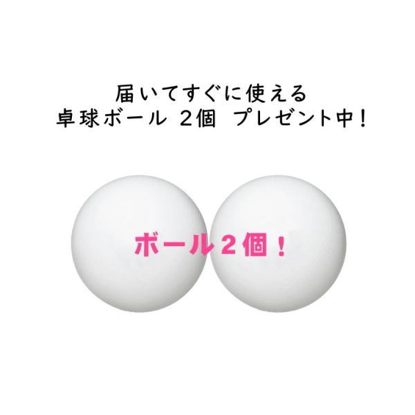 ニッタク 初心者・新入生応援セット サナリオンNK 卓球ラケット シェークハンド Nittaku|sunward|07