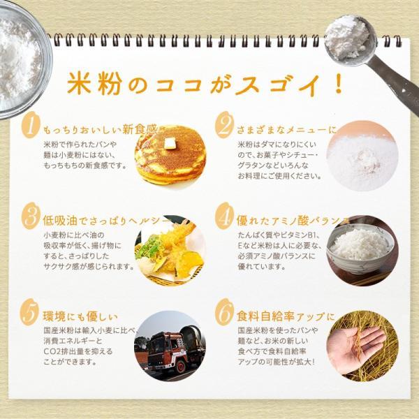 米粉 パン用 グルテンフリー お米の粉で作ったミックス粉・パン用 500g 送料無料 ホームベーカリー 国産米粉 小麦不使用 家庭用 お試し ポイント消化|super-foods-japan|04