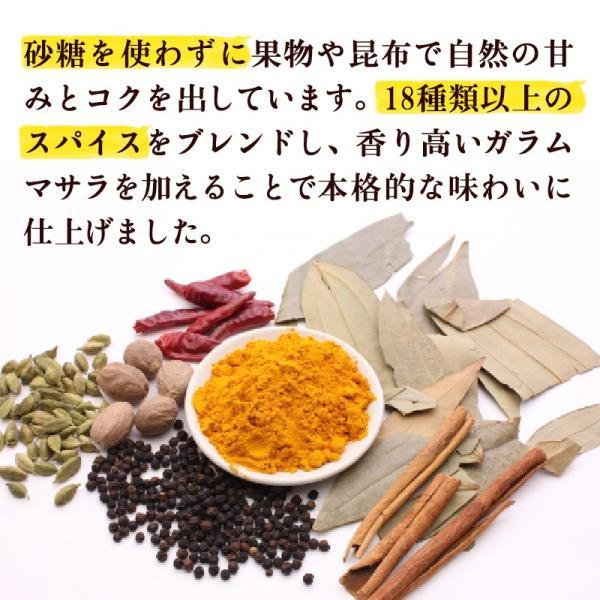 カレールー カレー粉 化学調味料不使用 無添加 小麦不使用 グルテンフリー ファイン カレーフレーク 120g×2袋 super-foods-japan 02