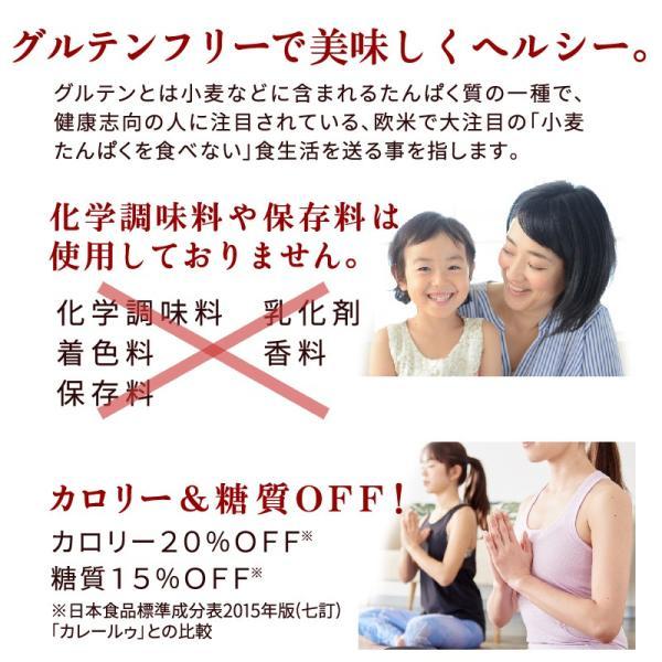 カレールー カレー粉 化学調味料不使用 無添加 小麦不使用 グルテンフリー ファイン カレーフレーク 120g×2袋 super-foods-japan 05