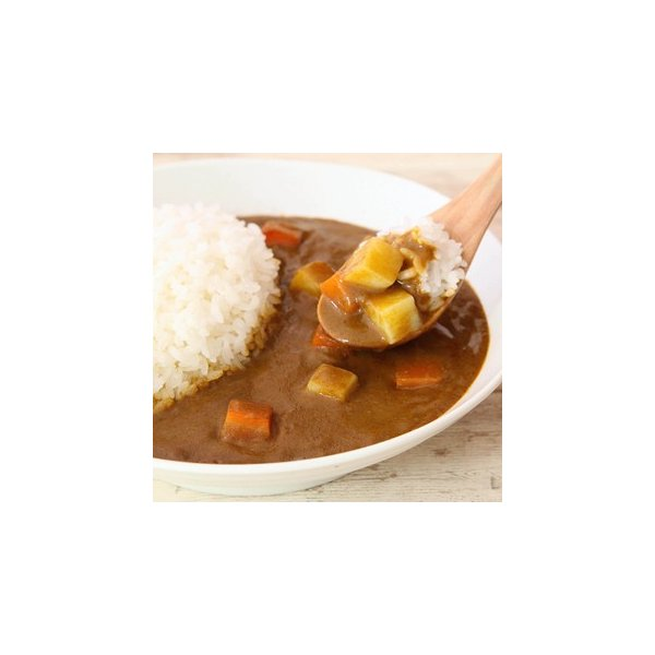 カレールー カレー粉 化学調味料不使用 無添加 小麦不使用 グルテンフリー ファイン カレーフレーク 120g×2袋 super-foods-japan 09