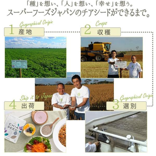 魔法のチョコ チアチョコレート 280g チョコレートバー ダイエットスイーツ ダイエット食品 チアシード super-foods-japan 09