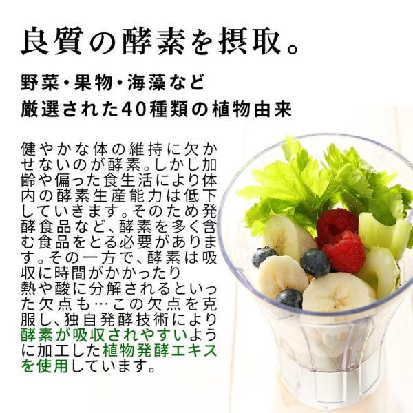 【半額】スムージー ダイエット チアジュージー 250g チアシード 酵素 シールド乳酸菌 植物発酵エキス|super-foods-japan|05