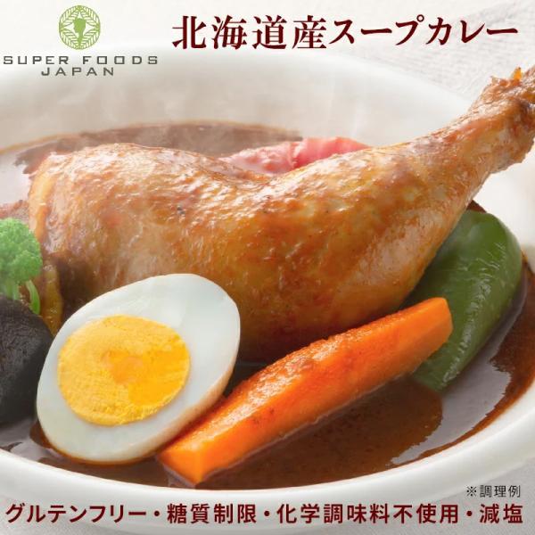 スープカレーレトルトカレー2食(300g×2袋)北海道からだ想いのスープカレーグルテンフリー