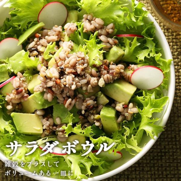 雑穀米 もち麦 16種雑穀米 500g 国産 発芽玄米 黒米 古代米 大麦β-グルカン|super-foods-japan|15