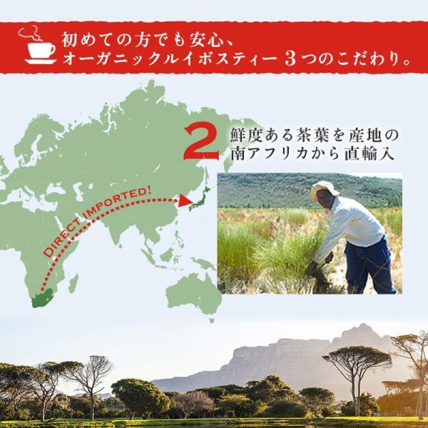 ルイボスティー オーガニック 水出し ティーバッグ プレミアムグレード 108包(54包×2袋)|super-foods-japan|03