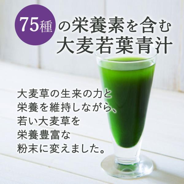青汁 グリーンフーズ グリーンマグマ 大麦若葉 150g 25回分|supplefactory|02