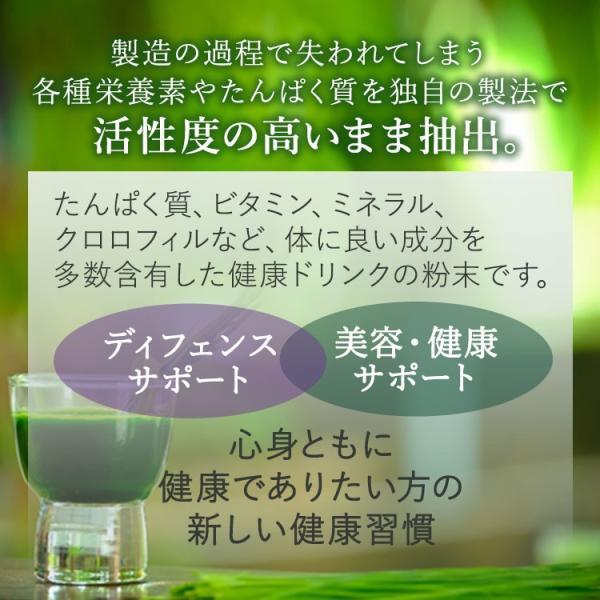 青汁 グリーンフーズ グリーンマグマ 大麦若葉 150g 25回分|supplefactory|03