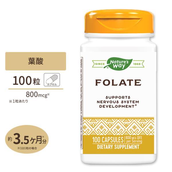 葉酸 800mcg 100粒|supplefactory