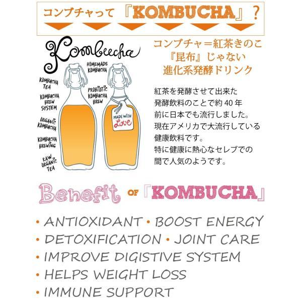 濃〜いコンブチャエンザイムパウダー200g 送料無料 クレンズライフ ダイエット コンブチャクレンズ  生サプリ 酵素 kombucha|supplemarche|10