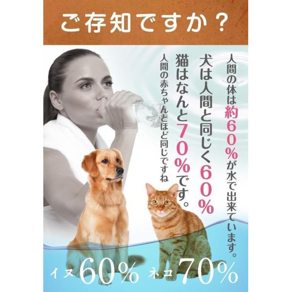 容器がプラに!お得な3本セット 犬猫用水素発生魔法のスティックペット用 水素水 犬 猫 ペット健康 水  supplemarche 13