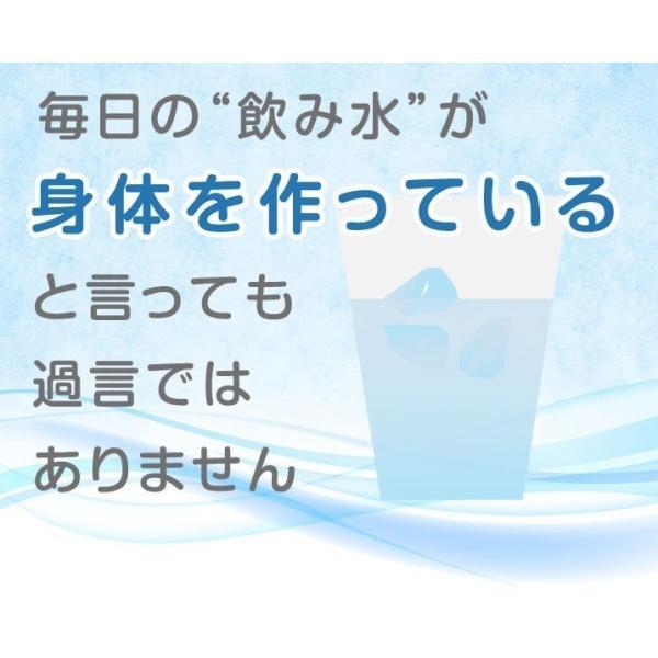 容器がプラに!お得な3本セット 犬猫用水素発生魔法のスティックペット用 水素水 犬 猫 ペット健康 水  supplemarche 14