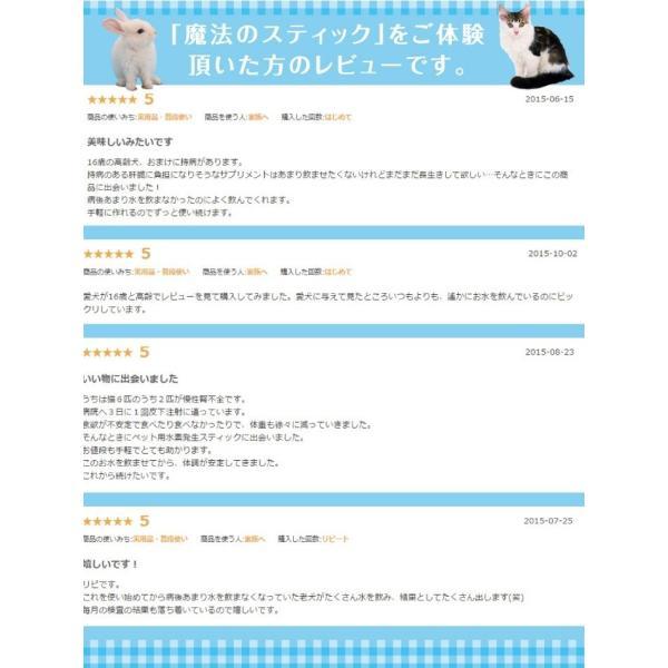 犬猫用水素発生魔法のスティックペット用 水素水 犬 猫 硬度を下げる ペット健康 水 |supplemarche|06