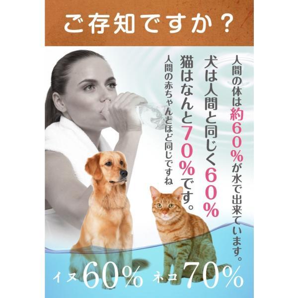 小動物用 水素発生魔法のスティック 水素水 ハムスター ウサギ|supplemarche|16