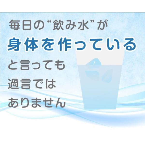 小動物用 水素発生魔法のスティック 水素水 ハムスター ウサギ|supplemarche|17
