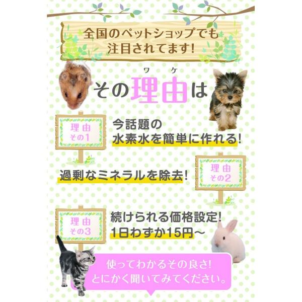小動物用 水素発生魔法のスティック 水素水 ハムスター ウサギ|supplemarche|10
