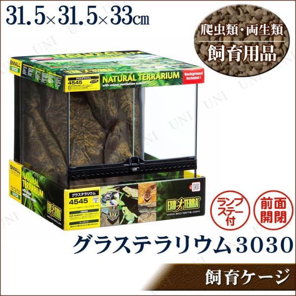 爬虫類 両生類用ケージ グラステラリウム 3030|supplies-world