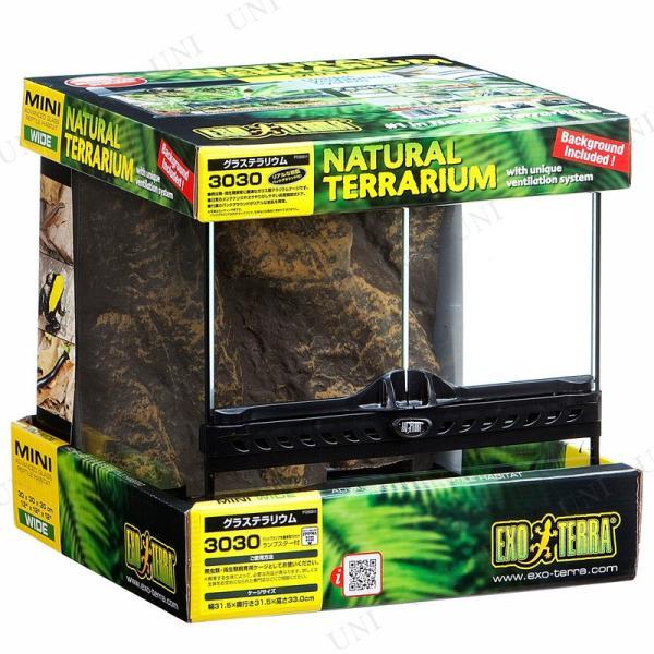 爬虫類 両生類用ケージ グラステラリウム 3030|supplies-world|02