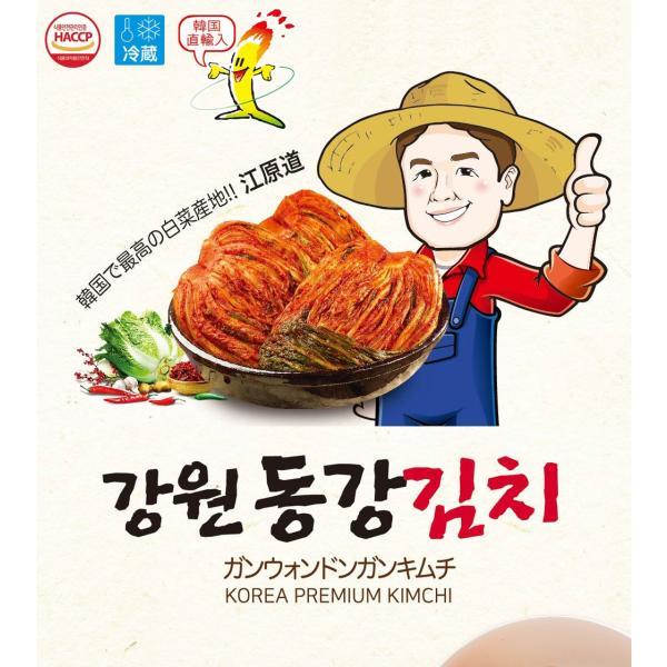 6.30入荷 No6065【韓国産】江原(ガンウォン)ドンガンキムチ 5kg