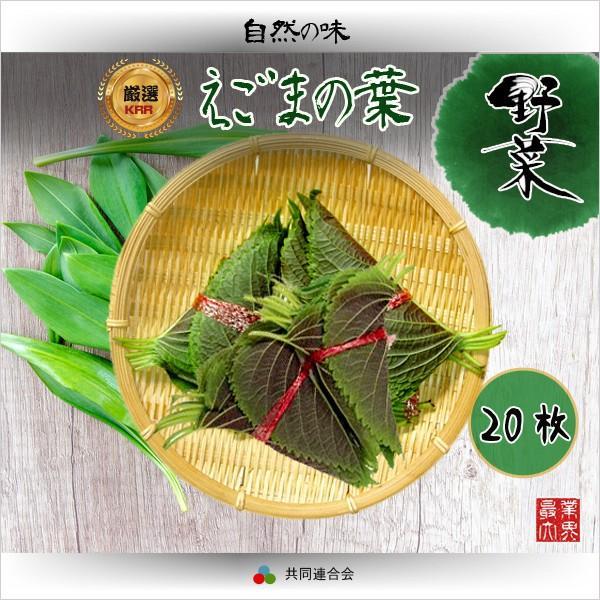 えごまの葉 20枚(1束) / 焼肉素材野菜類・焼肉野菜といえばこれ エゴマ の葉/ |surakkanplus