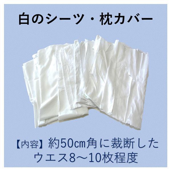 シーツウエス お試しパック 白 綿布 リサイクル  仕上げ拭き 使い捨てぞうきん |suzuroku-uesu|02