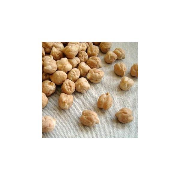 ひよこ豆 5kg アメリカ産 ガルバンゾ 業務用パック