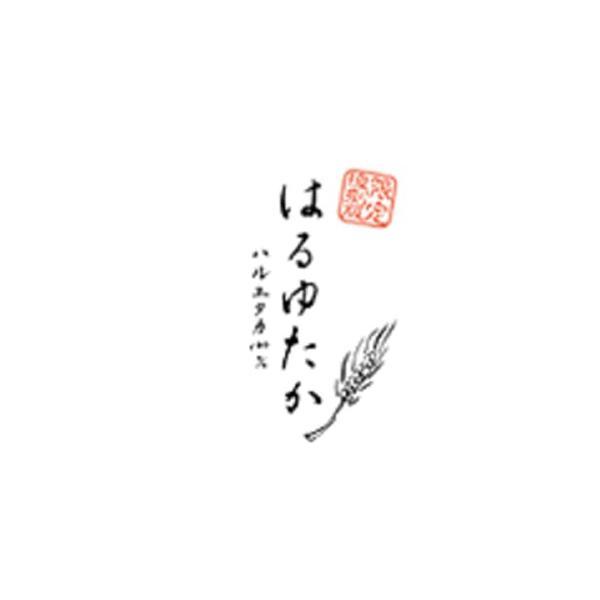 江別製粉 北海道産 パン用強力粉 はるゆたか100% 2.5kg (常温)