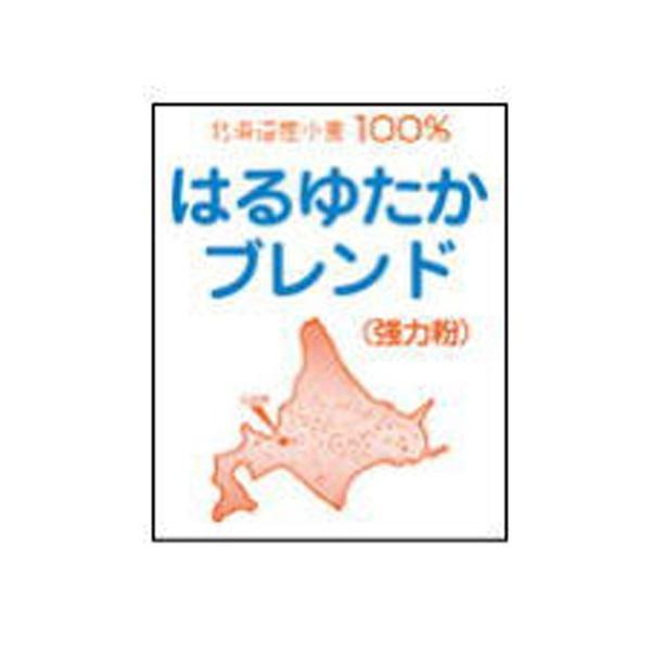 江別製粉 北海道産 パン用強力粉 はるゆたかブレンド 2.5kg (常温)(小分け)
