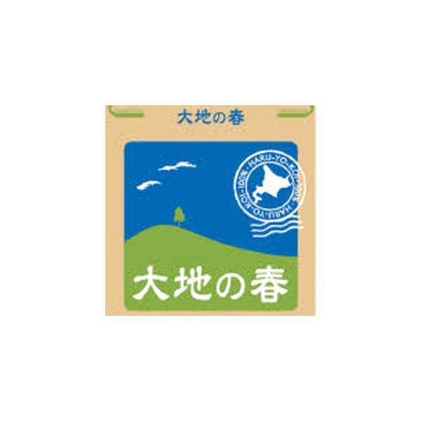 パン用強力粉 北海道産小麦 春よ恋100% 大地の春 2.5kg (常温)(小分け)