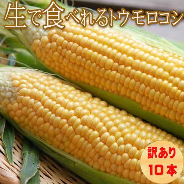 とうもろこし 北海道 富良野産 訳あり 恵味 めぐみ Mサイズ 14本入