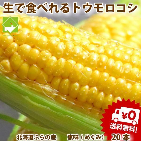 とうもろこし 北海道富良野産 恵味 L〜2Lサイズ 20本入 送料無料 別途送料が発生する地域があります