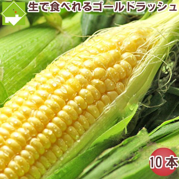 とうもろこし 北海道 富良野産 ゴールドラッシュ 10本入り 送料無料