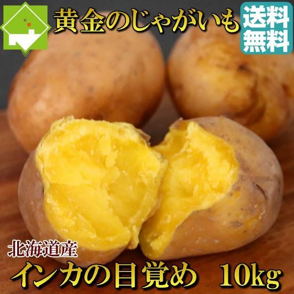 じゃがいも 北海道 インカのめざめ 10kg 送料無料