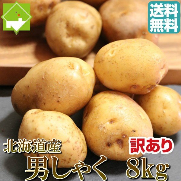 じゃがいも 北海道産 男爵 訳あり 8kg 送料無料 ジャガイモ ポイント消化