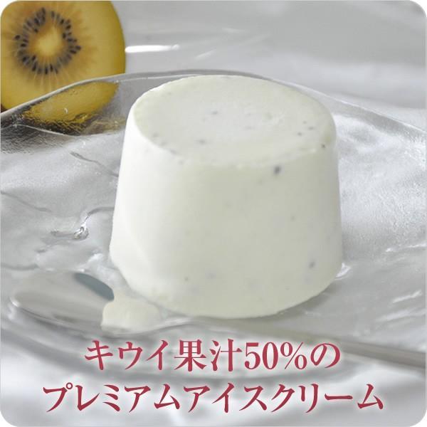 キウイ果汁50% キウイアイス アイスクリーム  キウイ  フルーツ (キウイ果汁50%のプレミアムアイスクリーム)