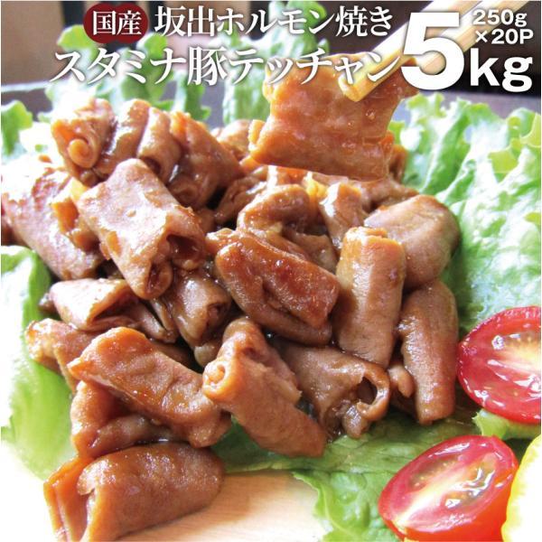 坂出ホルモン焼き スタミナ 国産 豚テッチャン 5kg (250g×20P) 焼肉 バーベキュー BBQ ホルモン焼き お取り寄せ グルメ もつ *当日発送対象*送料無料