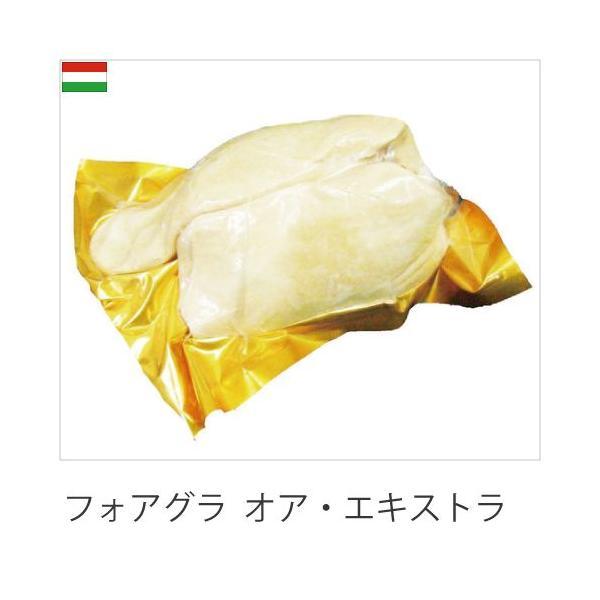 外国産鴨肉 フォアグラ ド フレンチAグレード 500〜600g  ブロック ハンガリー産 冷凍品 業務用