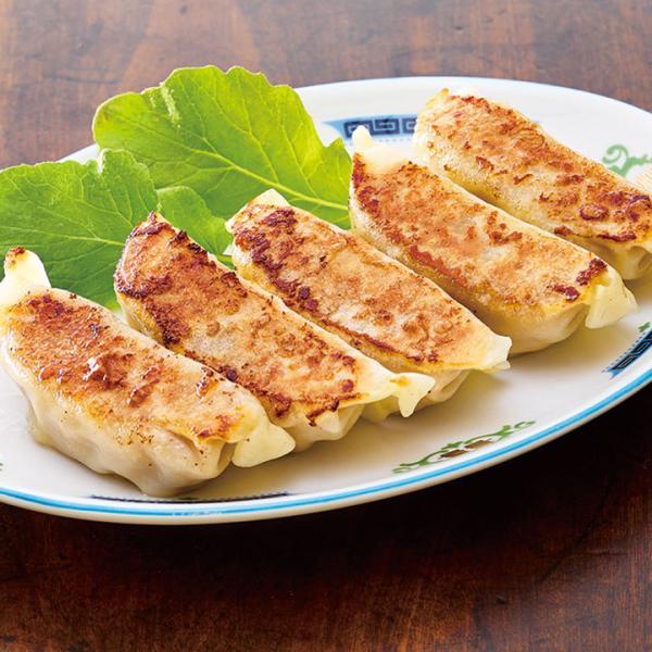 冷凍食品 業務用 ジャンボ ぎょうざ 900g (30個入) 22210 焼き 揚げ 国産 キャベツ
