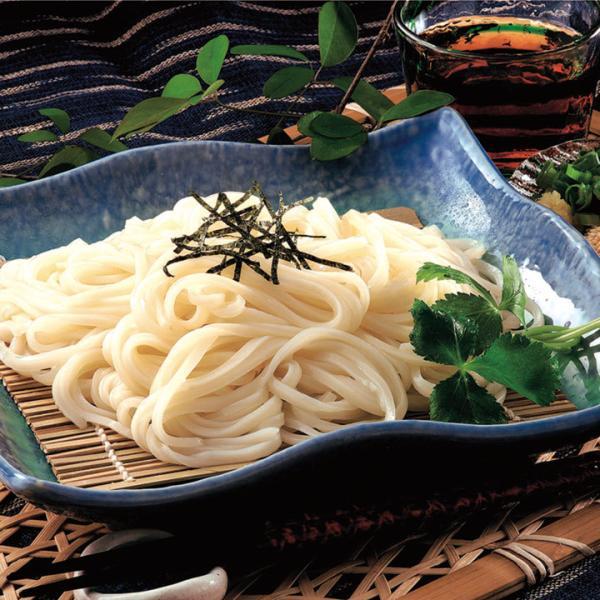 冷凍食品 業務用 稲庭風うどん (割子) 100g×10食入 22304 弁当 麺 冷凍うどん 小分 少量 細麺