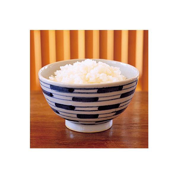 業務用 低温製法米のおいしいごはん 180g×3パック入 22586  レンジ 御飯 ご飯 保存食 非常食
