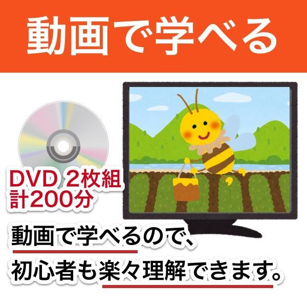 これならできる!ニホンミツバチの週末養蜂【DVD付】|syumatsu-yoho|02