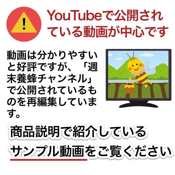 これならできる!ニホンミツバチの週末養蜂【DVD付】|syumatsu-yoho|10