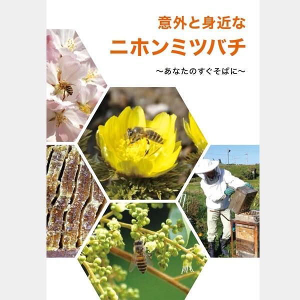 意外と身近なニホンミツバチ 〜あなたのすぐそばに〜|syumatsu-yoho
