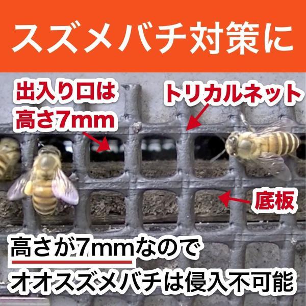 重箱式巣箱4段セット|syumatsu-yoho|07